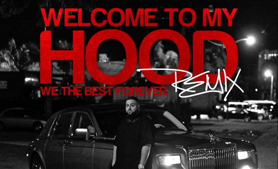 "DJ Khaled feat. Ludacris, T-Pain, Busta Rhymes, Mavado, Twista, Birdman, Ace Hood, Fat Joe, Jadakiss, Bun B, Game, & Waka Flocka – ""Welcome To My Hood (remix)"""